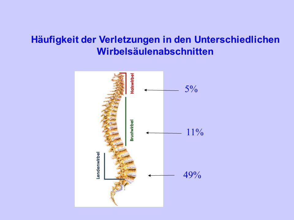 Häufigkeit der Verletzungen in den Unterschiedlichen Wirbelsäulenabschnitten 5% 11% 49%