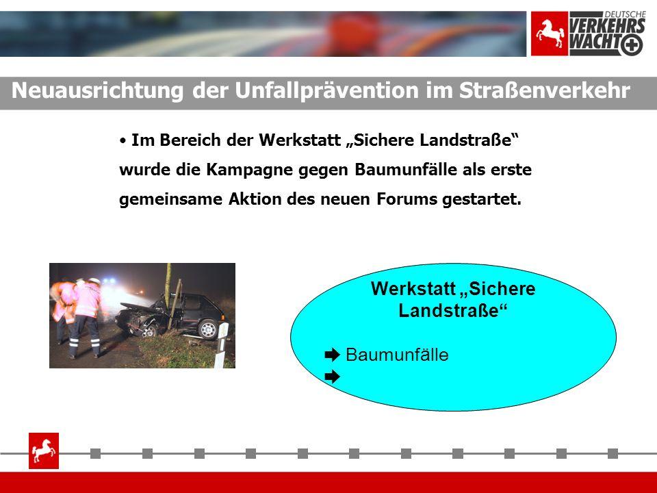 Neuausrichtung der Unfallprävention im Straßenverkehr Werkstatt Sichere Landstraße Baumunf ä lle Im Bereich der Werkstatt Sichere Landstraße wurde die