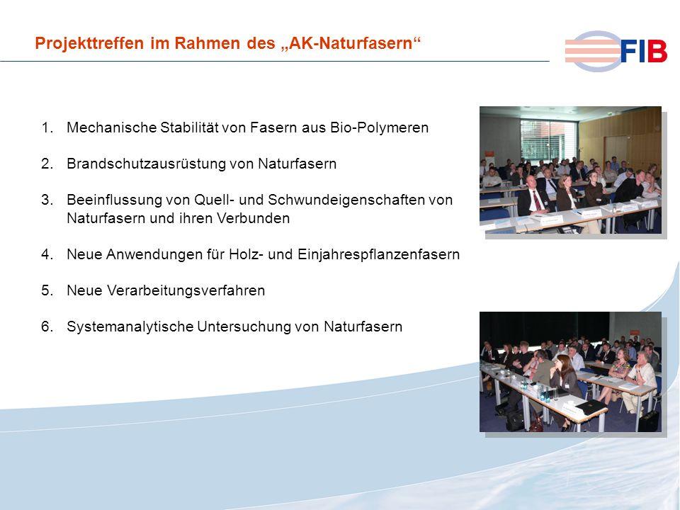 © 2008 Fiber International BremenAktivitäten 2008 im Überblick Projekttreffen im Rahmen des AK-Naturfasern 1.Mechanische Stabilität von Fasern aus Bio