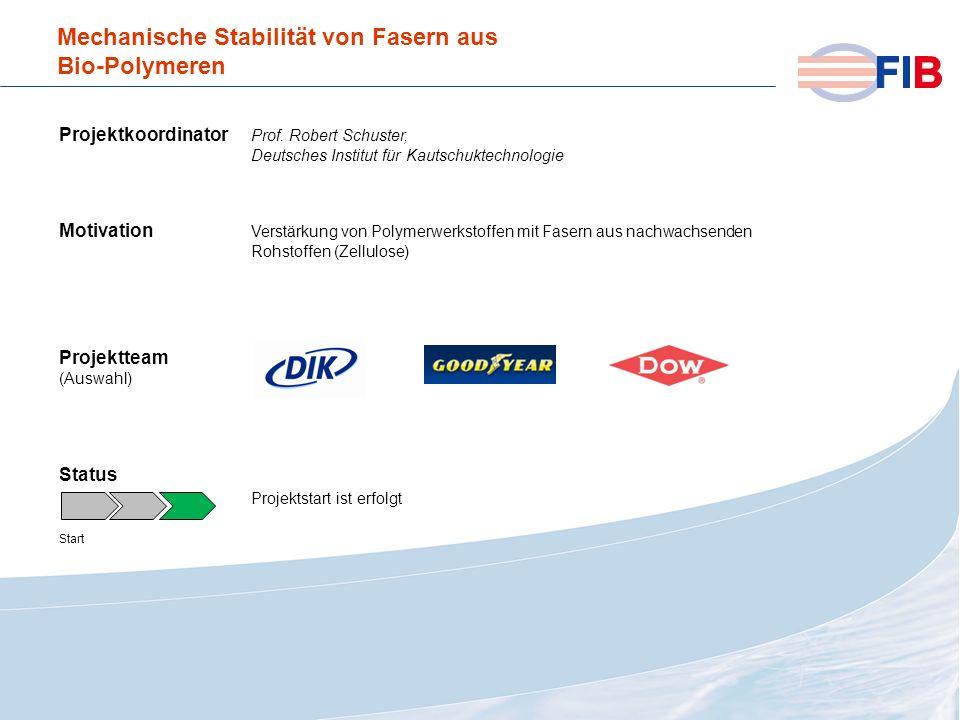 © 2008 Fiber International BremenAktivitäten 2008 im Überblick Mechanische Stabilität von Fasern aus Bio-Polymeren Projektkoordinator Prof. Robert Sch