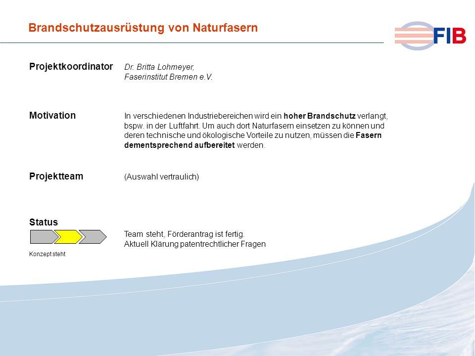 © 2008 Fiber International BremenAktivitäten 2008 im Überblick Brandschutzausrüstung von Naturfasern Projektkoordinator Dr. Britta Lohmeyer, Faserinst