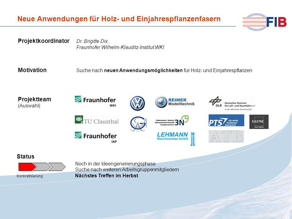 © 2008 Fiber International BremenAktivitäten 2008 im Überblick Neue Anwendungen für Holz- und Einjahrespflanzenfasern Projektkoordinator Dr. Brigitte