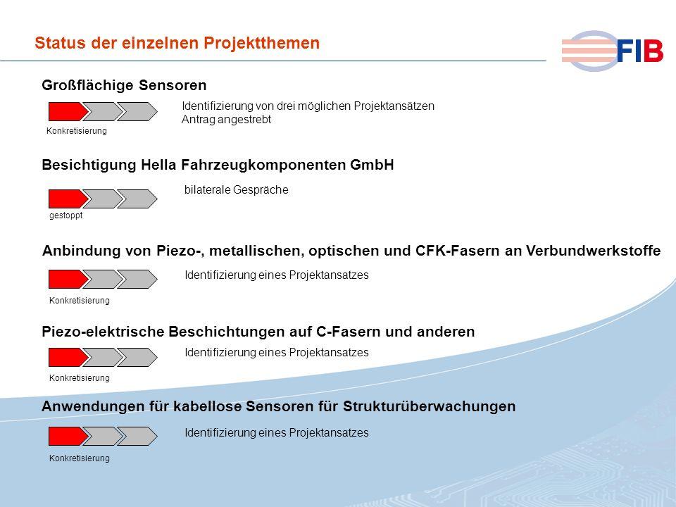 © 2008 Fiber International BremenAktivitäten 2008 im Überblick Status der einzelnen Projektthemen Identifizierung von drei möglichen Projektansätzen A