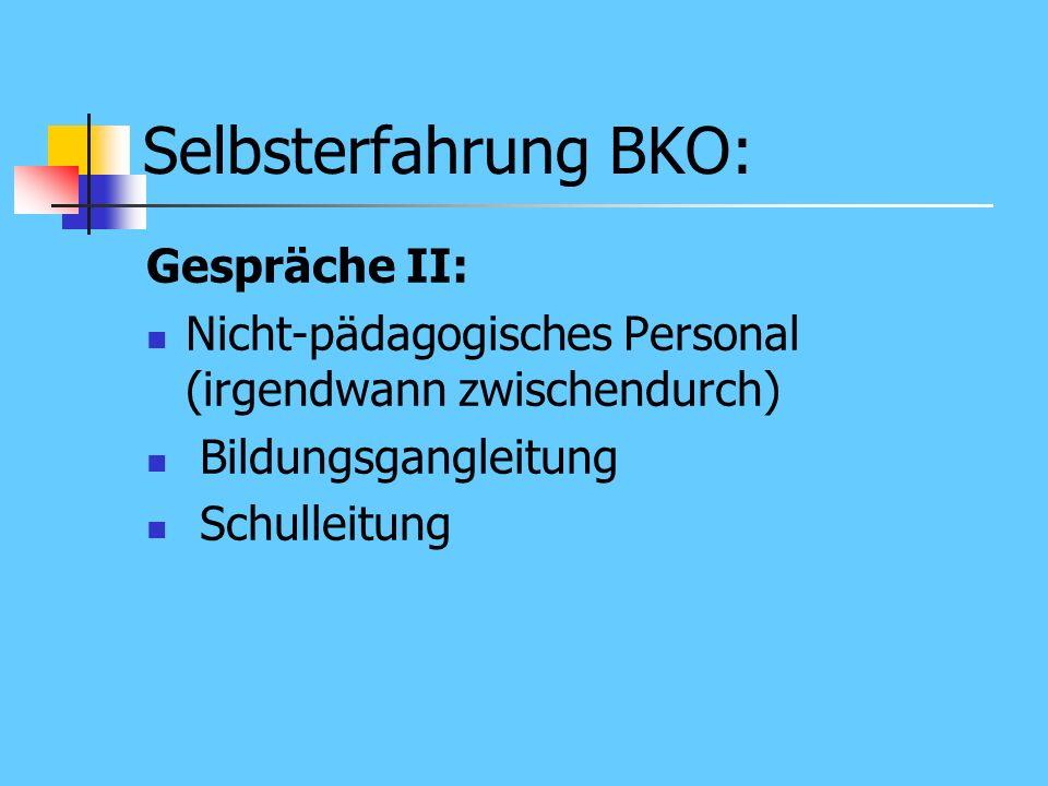 Selbsterfahrung BKO: Gespräche I: Lehrer: repräsentative Auswahl durch die Schulleitung (ca. 15 Personen) Schüler: repräsentative Auswahl durch die Sc