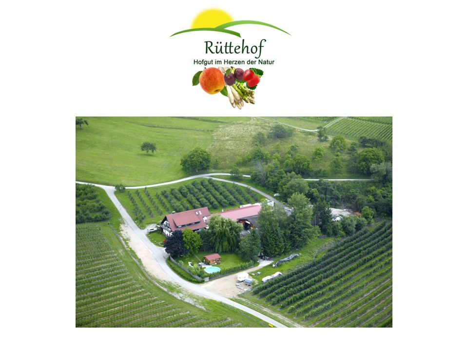 1968 Der Rüttehof siedelte von Haltingen nach Wollbach um und begann zunächst mit Tierzucht sowie etwas Gemüse- und Obstanbau.