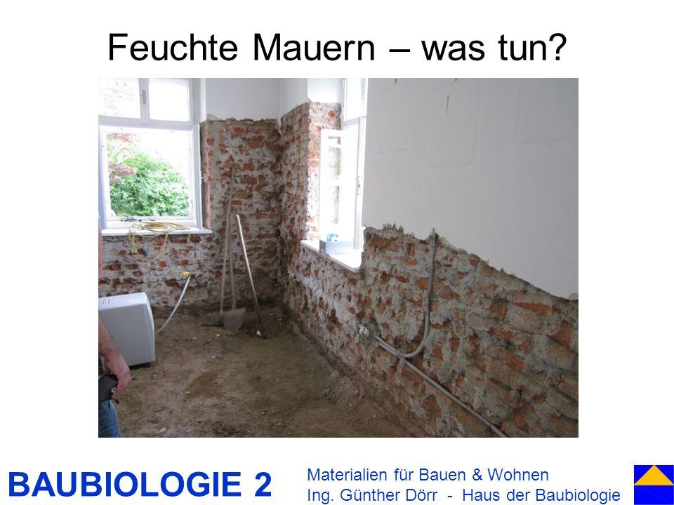 BAUBIOLOGIE 2 Feuchte Mauern – was tun? Materialien für Bauen & Wohnen Ing. Günther Dörr - Haus der Baubiologie