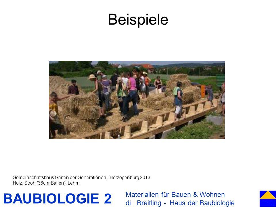 BAUBIOLOGIE 2 Beispiele Materialien für Bauen & Wohnen di Breitling - Haus der Baubiologie Gemeinschaftshaus Garten der Generationen, Herzogenburg 201