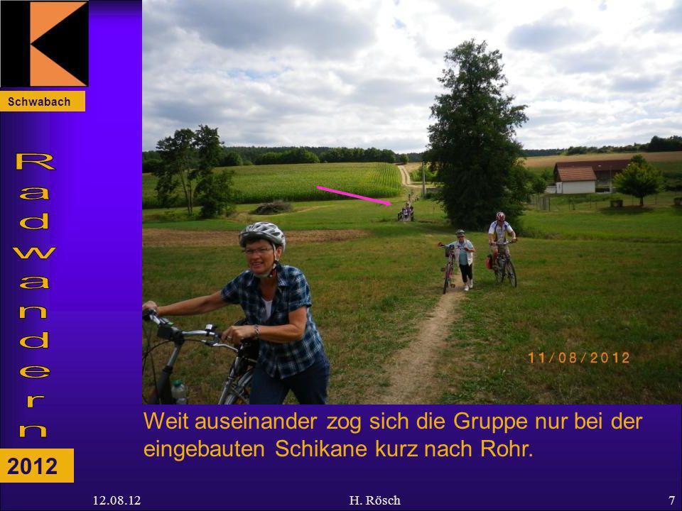 Schwabach 2012 12.08.12H. Rösch7 Weit auseinander zog sich die Gruppe nur bei der eingebauten Schikane kurz nach Rohr.