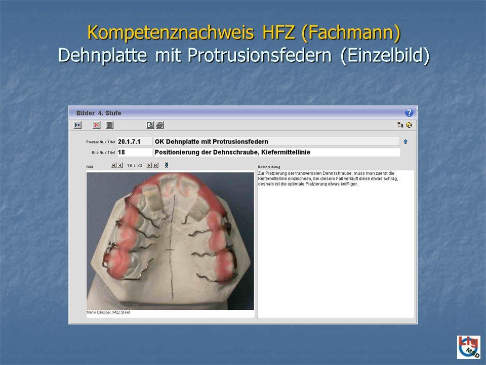 Kompetenznachweis HFZ (Fachmann) Dehnplatte mit Protrusionsfedern (Einzelbild)