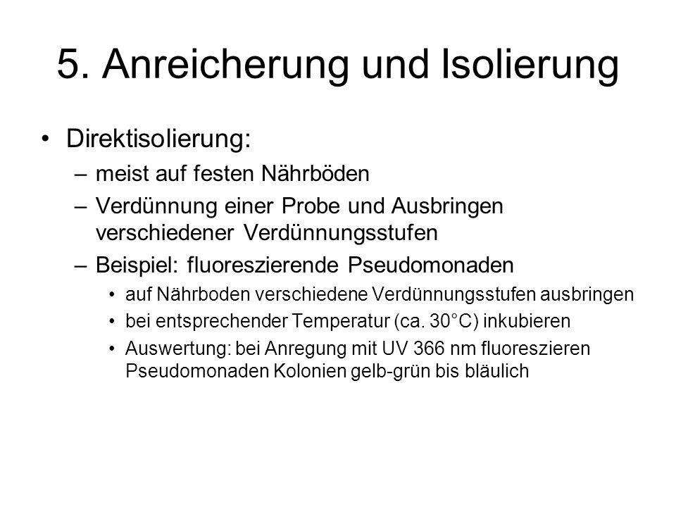 5.Anreicherung und Isolierung Trübungsmessung –Photometer: Trübungsmessung: –vor Messung Lsg.