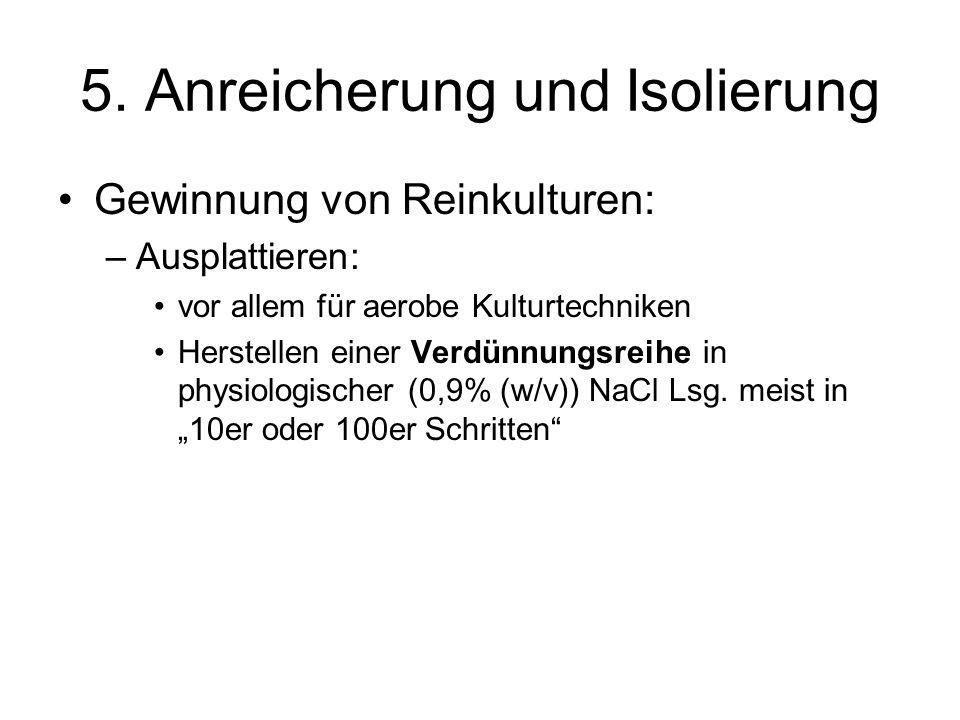 5. Anreicherung und Isolierung Gewinnung von Reinkulturen: –Ausplattieren: vor allem für aerobe Kulturtechniken Herstellen einer Verdünnungsreihe in p