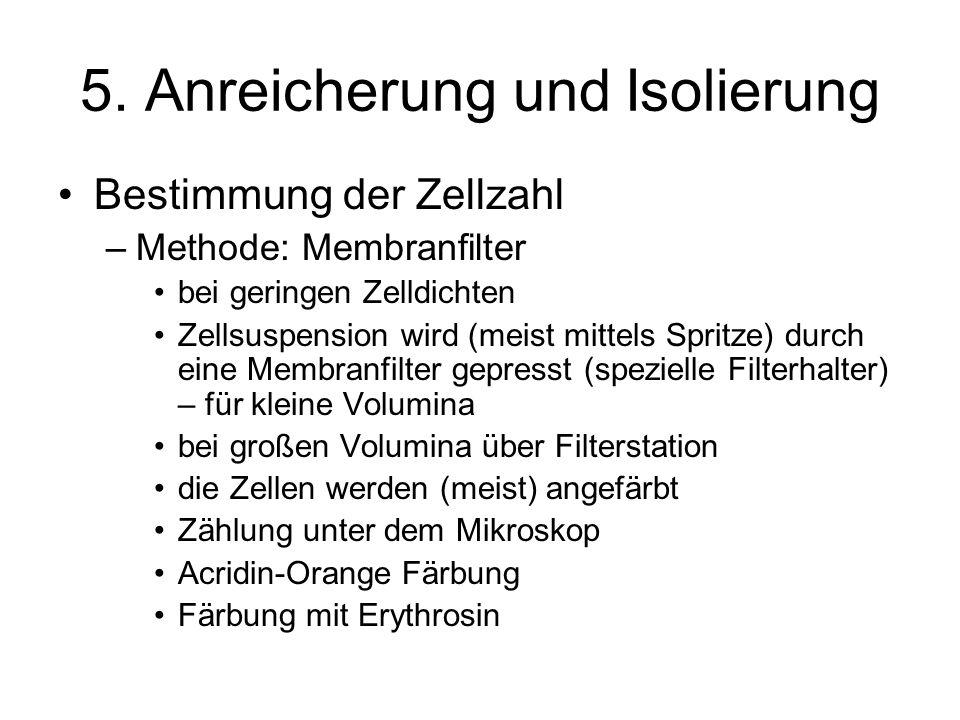 5. Anreicherung und Isolierung Bestimmung der Zellzahl –Methode: Membranfilter bei geringen Zelldichten Zellsuspension wird (meist mittels Spritze) du