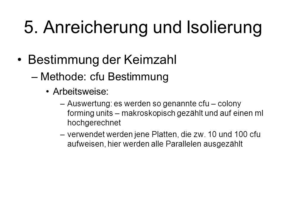 5. Anreicherung und Isolierung Bestimmung der Keimzahl –Methode: cfu Bestimmung Arbeitsweise: –Auswertung: es werden so genannte cfu – colony forming