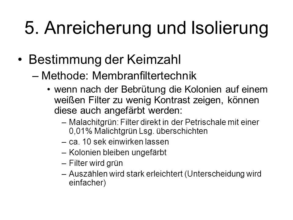 5. Anreicherung und Isolierung Bestimmung der Keimzahl –Methode: Membranfiltertechnik wenn nach der Bebrütung die Kolonien auf einem weißen Filter zu