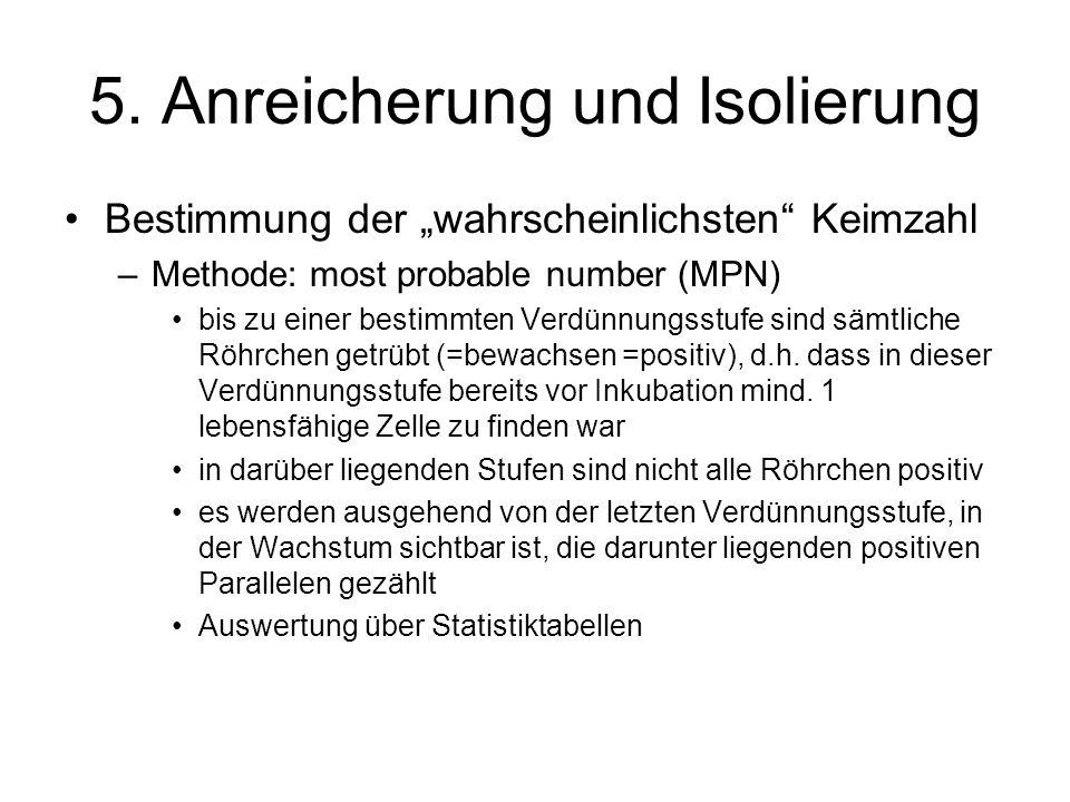 5. Anreicherung und Isolierung Bestimmung der wahrscheinlichsten Keimzahl –Methode: most probable number (MPN) bis zu einer bestimmten Verdünnungsstuf