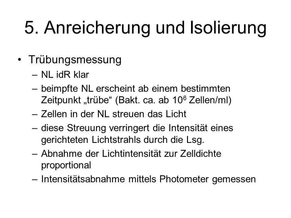 5. Anreicherung und Isolierung Trübungsmessung –NL idR klar –beimpfte NL erscheint ab einem bestimmten Zeitpunkt trübe (Bakt. ca. ab 10 6 Zellen/ml) –