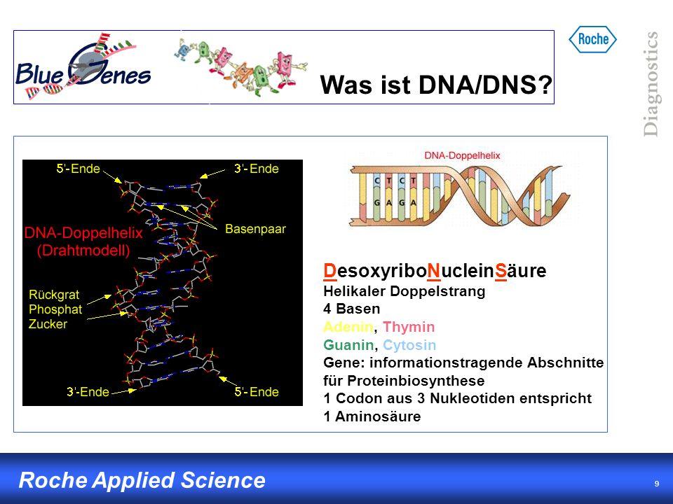 10 Roche Applied Science Proteinbiosynthese: Vom Gen zum Protein