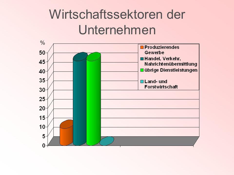 Wirtschaftssektoren der Unternehmen %