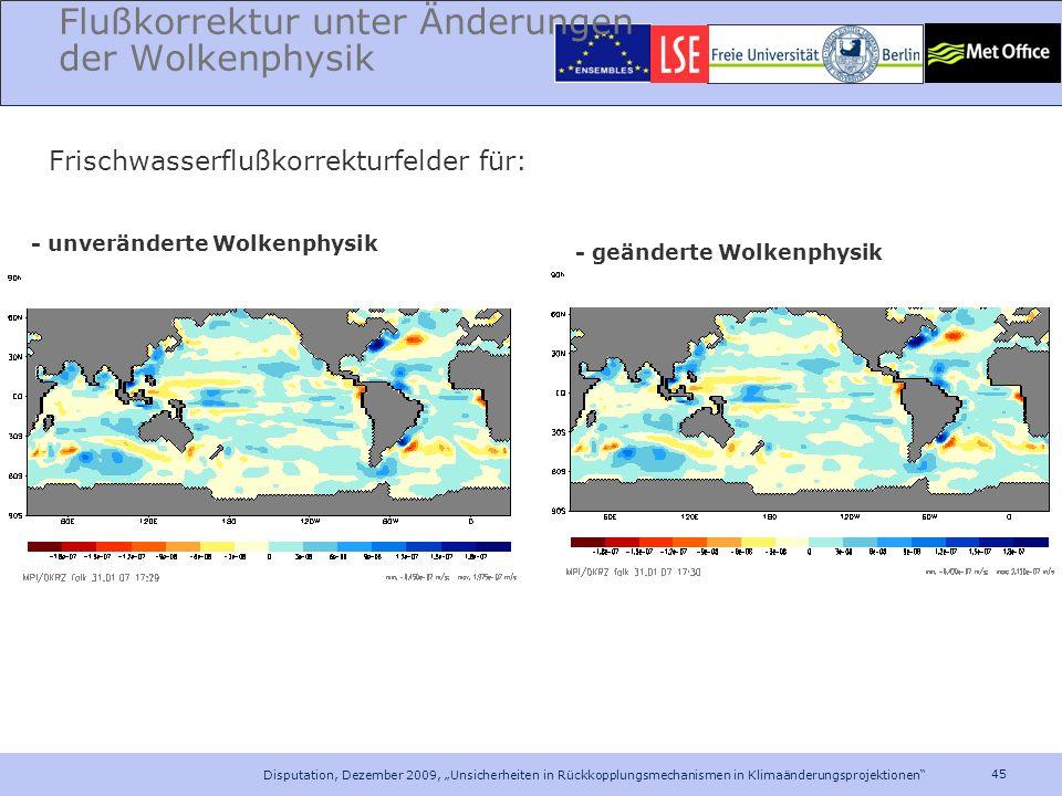 45 Disputation, Dezember 2009, Unsicherheiten in Rückkopplungsmechanismen in Klimaänderungsprojektionen Flußkorrektur unter Änderungen der Wolkenphysi