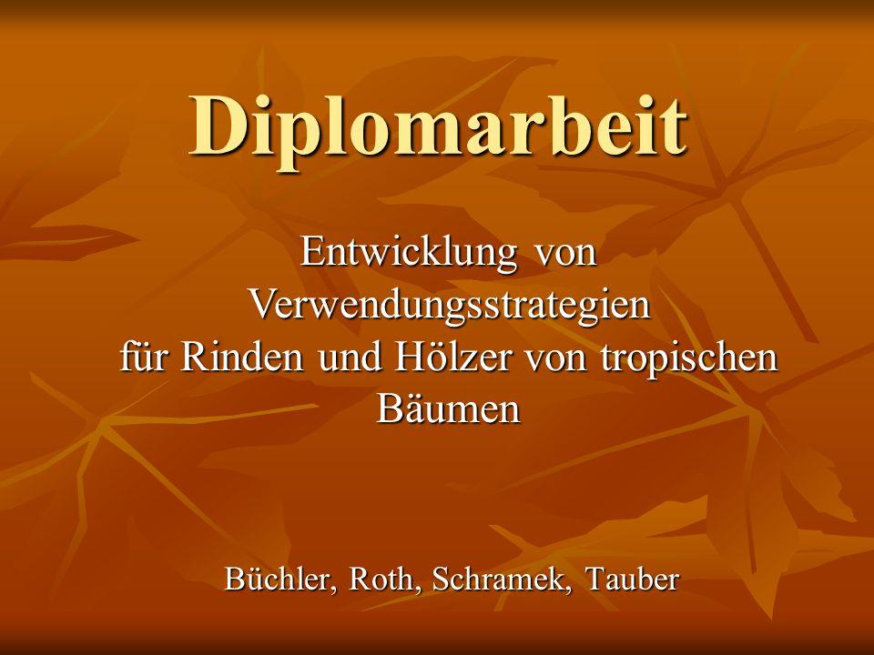 Diplomarbeit Entwicklung von Verwendungsstrategien für Rinden und Hölzer von tropischen Bäumen Büchler, Roth, Schramek, Tauber