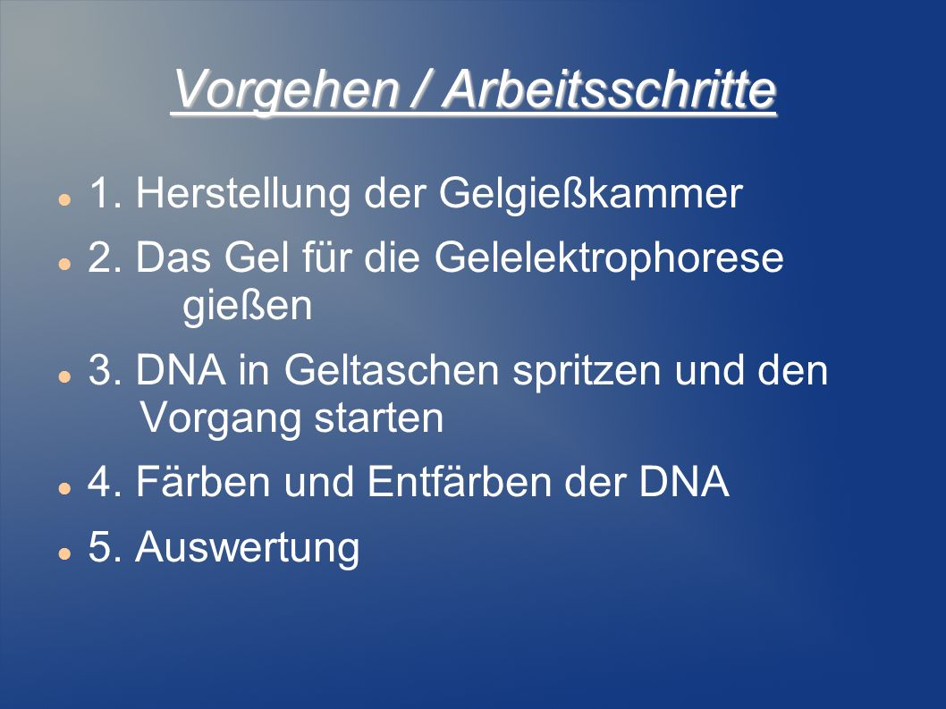 Vorgehen / Arbeitsschritte 1. Herstellung der Gelgießkammer 2. Das Gel für die Gelelektrophorese gießen 3. DNA in Geltaschen spritzen und den Vorgang