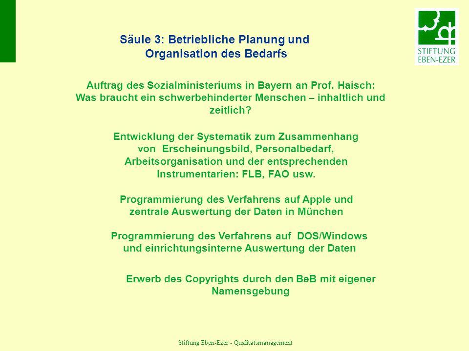Stiftung Eben-Ezer - Qualitätsmanagement Säule 3: Betriebliche Planung und Organisation des Bedarfs Entwicklung der Systematik zum Zusammenhang von Erscheinungsbild, Personalbedarf, Arbeitsorganisation und der entsprechenden Instrumentarien: FLB, FAO usw.