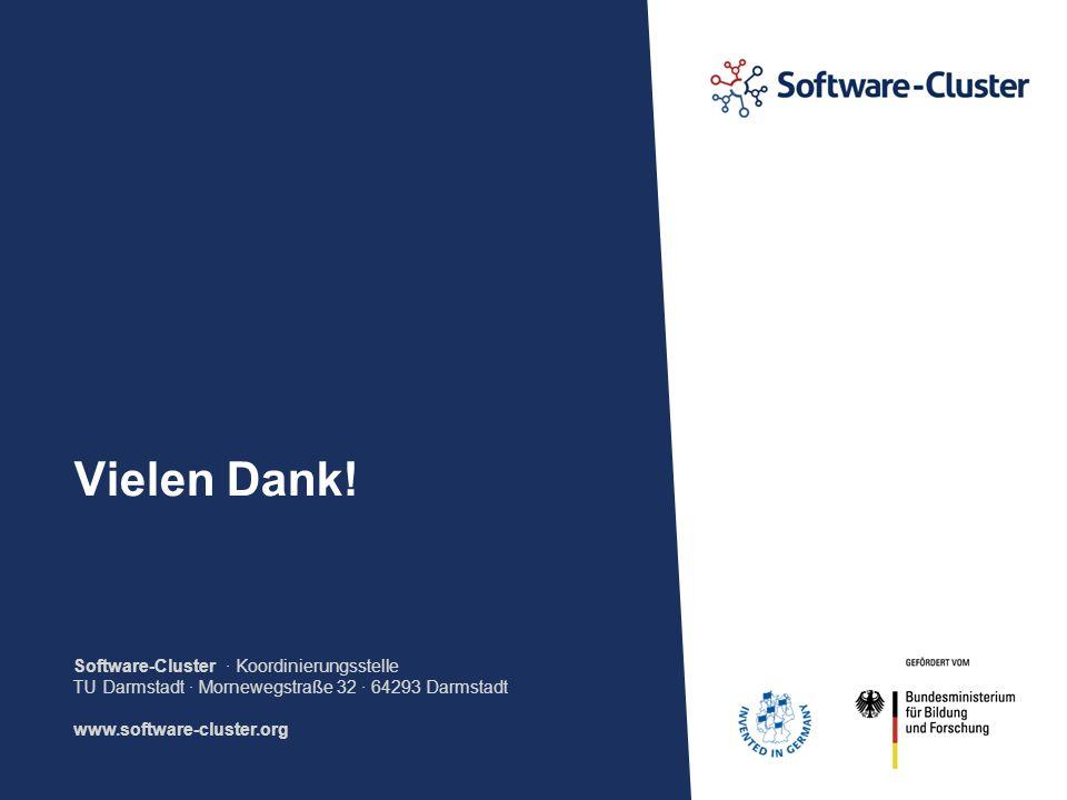 Software-Cluster · Koordinierungsstelle TU Darmstadt · Mornewegstraße 32 · 64293 Darmstadt www.software-cluster.org Vielen Dank!