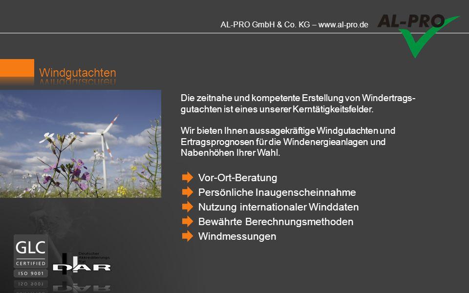 AL-PRO GmbH & Co. KG – www.al-pro.de Windgutachten Potenzialstudien Fluktuationsanalysen Performanceanalysen Turbulenzermittlungen Auswertung von Wind