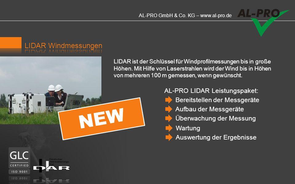 AL-PRO GmbH & Co. KG – www.al-pro.de Basis nahezu jedes Windgutachtens sind am Standort durchgeführte Windmessungen. Durchführung von Windmessungen Au