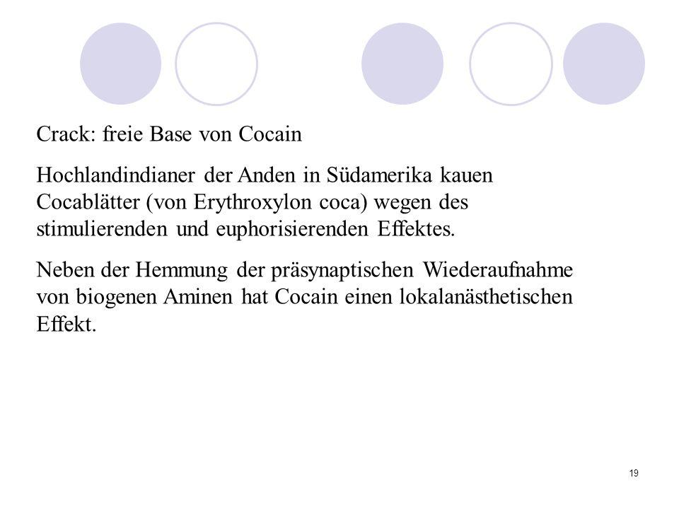19 Crack: freie Base von Cocain Hochlandindianer der Anden in Südamerika kauen Cocablätter (von Erythroxylon coca) wegen des stimulierenden und euphorisierenden Effektes.
