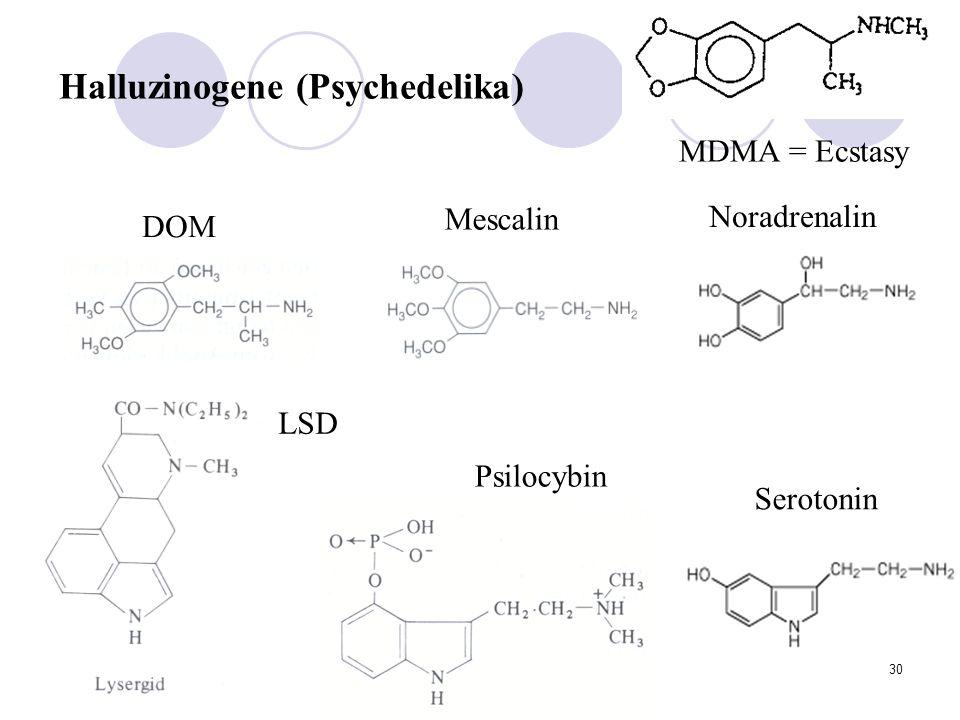 30 LSD Psilocybin DOM Mescalin Noradrenalin Serotonin MDMA = Ecstasy Halluzinogene (Psychedelika)