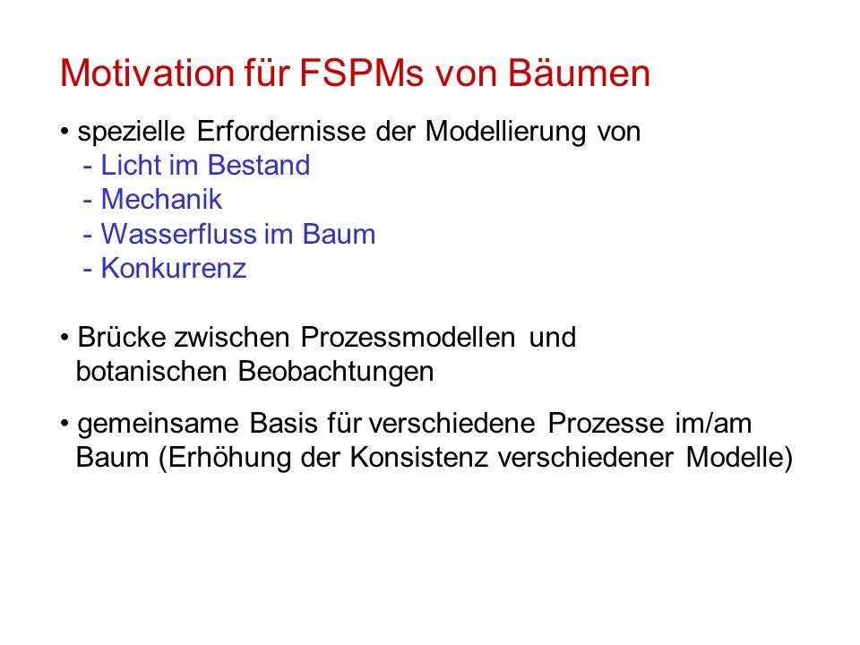 Motivation für FSPMs von Bäumen spezielle Erfordernisse der Modellierung von - Licht im Bestand - Mechanik - Wasserfluss im Baum - Konkurrenz Brücke zwischen Prozessmodellen und botanischen Beobachtungen gemeinsame Basis für verschiedene Prozesse im/am Baum (Erhöhung der Konsistenz verschiedener Modelle)