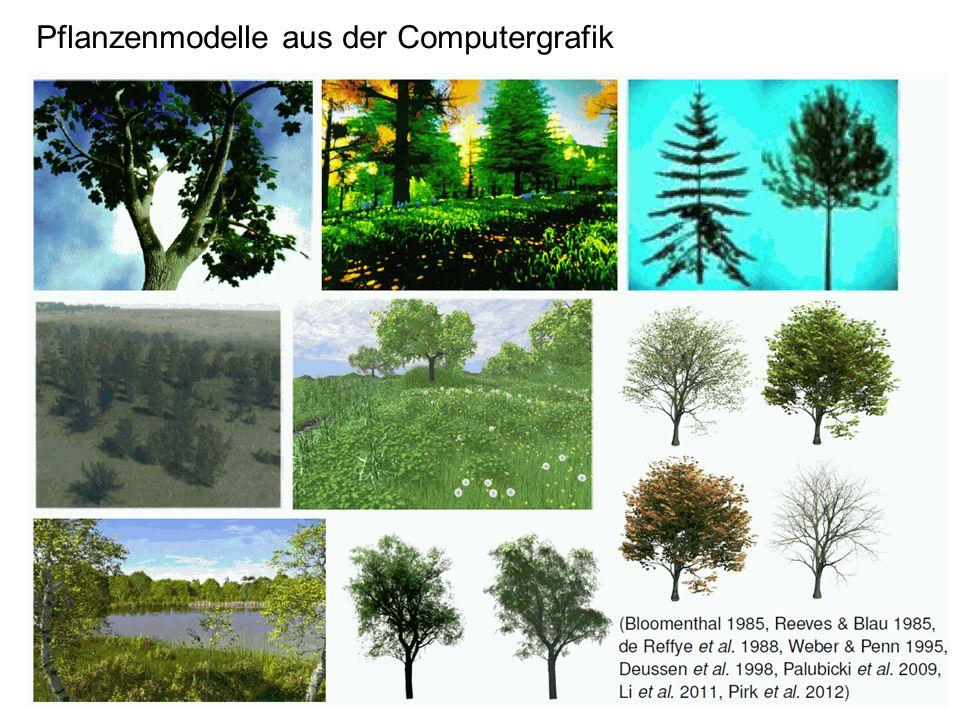 Pflanzenmodelle aus der Computergrafik