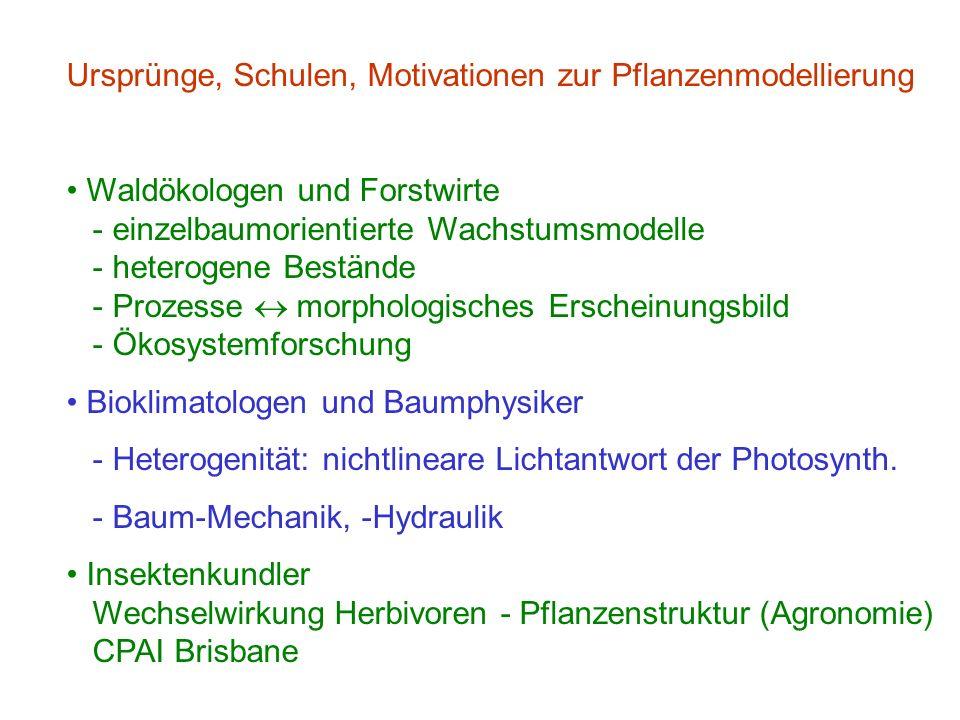 Ursprünge, Schulen, Motivationen zur Pflanzenmodellierung Waldökologen und Forstwirte - einzelbaumorientierte Wachstumsmodelle - heterogene Bestände - Prozesse morphologisches Erscheinungsbild - Ökosystemforschung Bioklimatologen und Baumphysiker - Heterogenität: nichtlineare Lichtantwort der Photosynth.