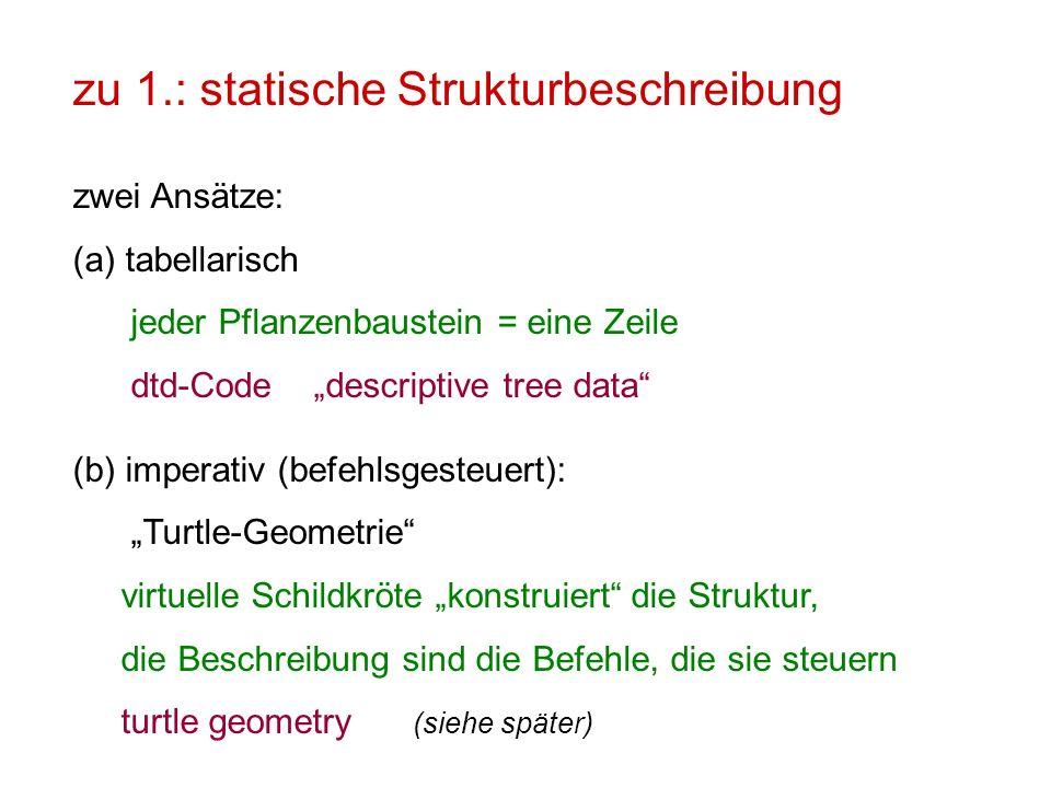 zu 1.: statische Strukturbeschreibung zwei Ansätze: (a)tabellarisch jeder Pflanzenbaustein = eine Zeile dtd-Code descriptive tree data (b) imperativ (befehlsgesteuert): Turtle-Geometrie virtuelle Schildkröte konstruiert die Struktur, die Beschreibung sind die Befehle, die sie steuern turtle geometry (siehe später)