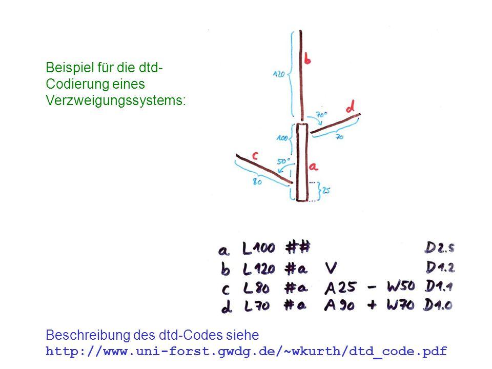 Beispiel für die dtd- Codierung eines Verzweigungssystems: Beschreibung des dtd-Codes siehe http://www.uni-forst.gwdg.de/~wkurth/dtd_code.pdf