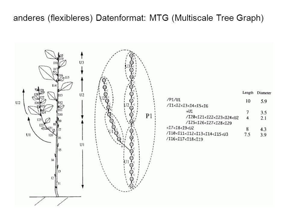 anderes (flexibleres) Datenformat: MTG (Multiscale Tree Graph)