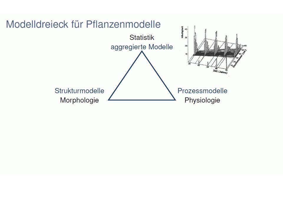 Ursprünge, Schulen, Motivationen zur Pflanzenmodellierung französische Schule (Hallé et al.: Botanik; CIRAD) tropische Wälder; Agronomie