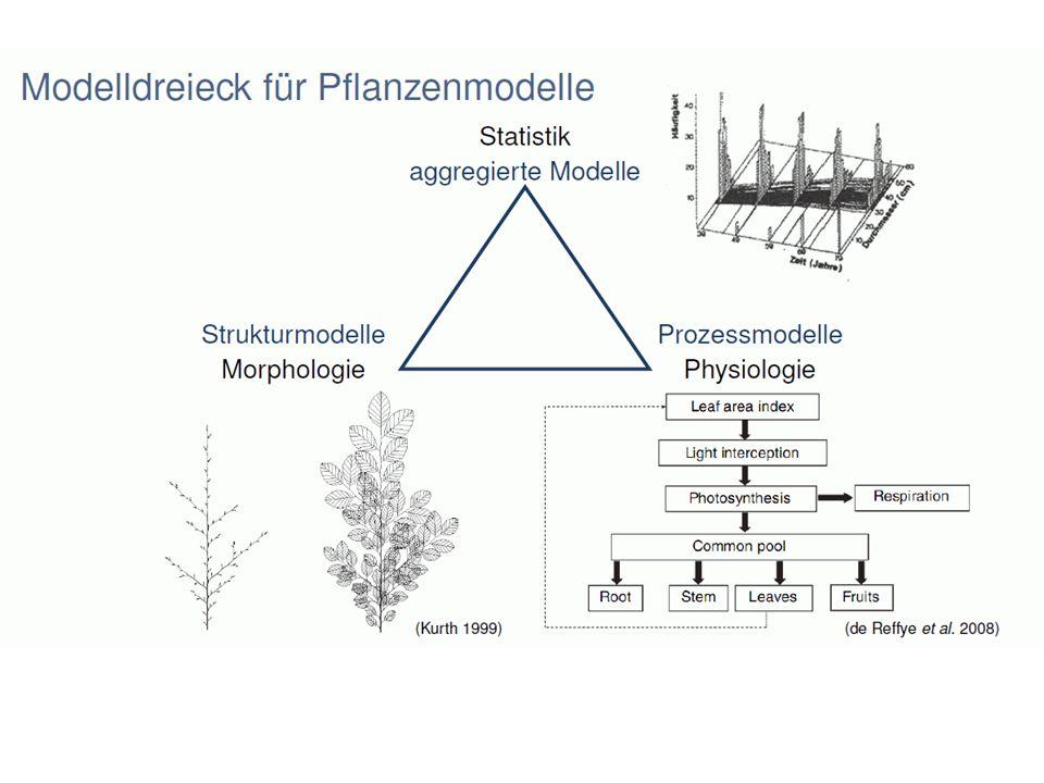 AMAP Atelier de Modélisation de lArchitecture des Plantes Montpellier, Paris, Strasbourg, Nancy, Beijing (LIAMA)