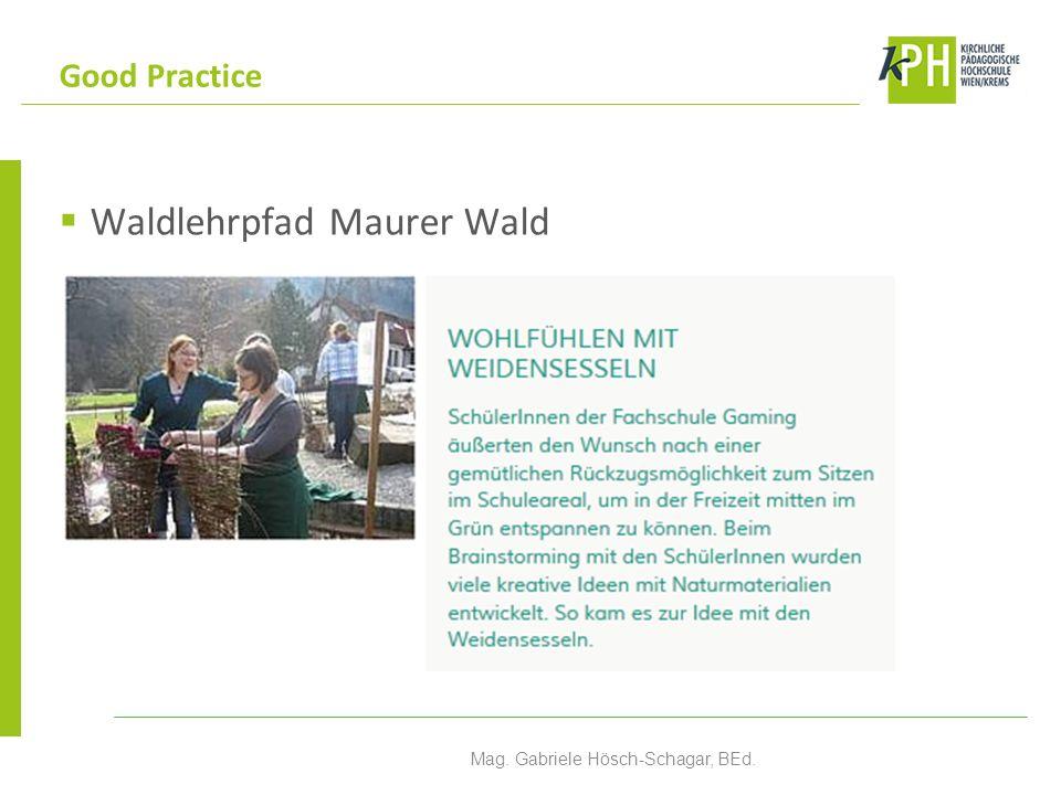 Waldlehrpfad Maurer Wald Good Practice Mag. Gabriele Hösch-Schagar, BEd.