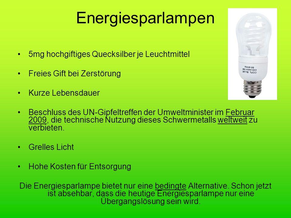 Energiesparlampen 5mg hochgiftiges Quecksilber je Leuchtmittel Freies Gift bei Zerstörung Kurze Lebensdauer Beschluss des UN-Gipfeltreffen der Umweltm