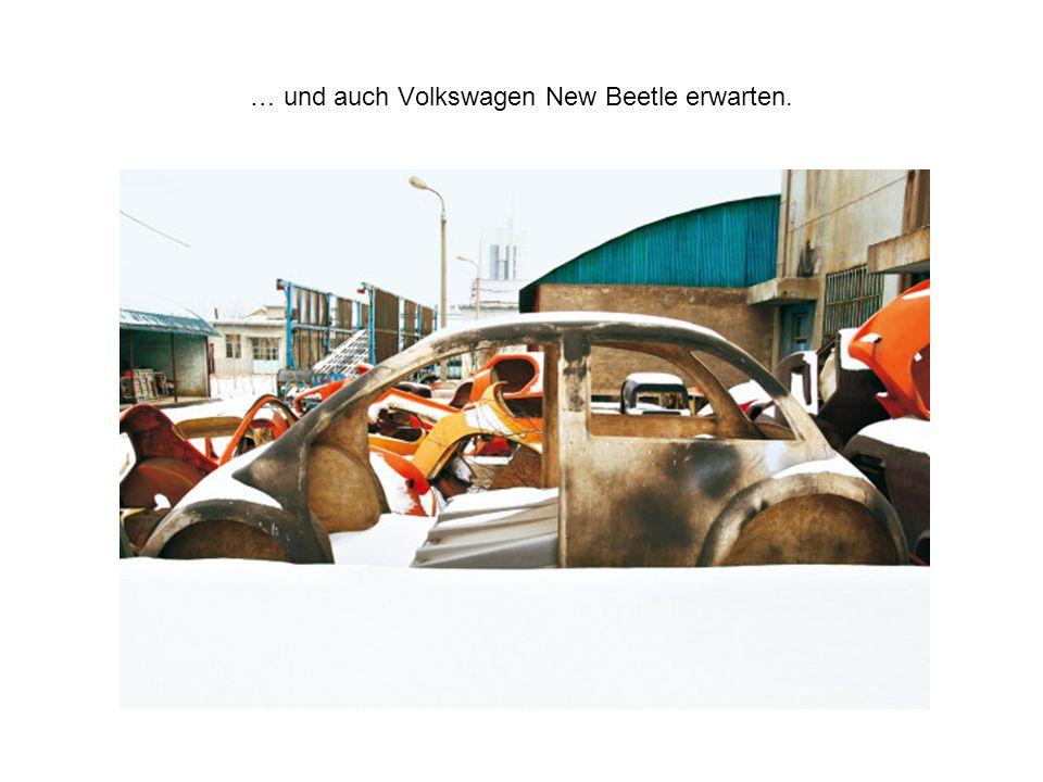 … und auch Volkswagen New Beetle erwarten.
