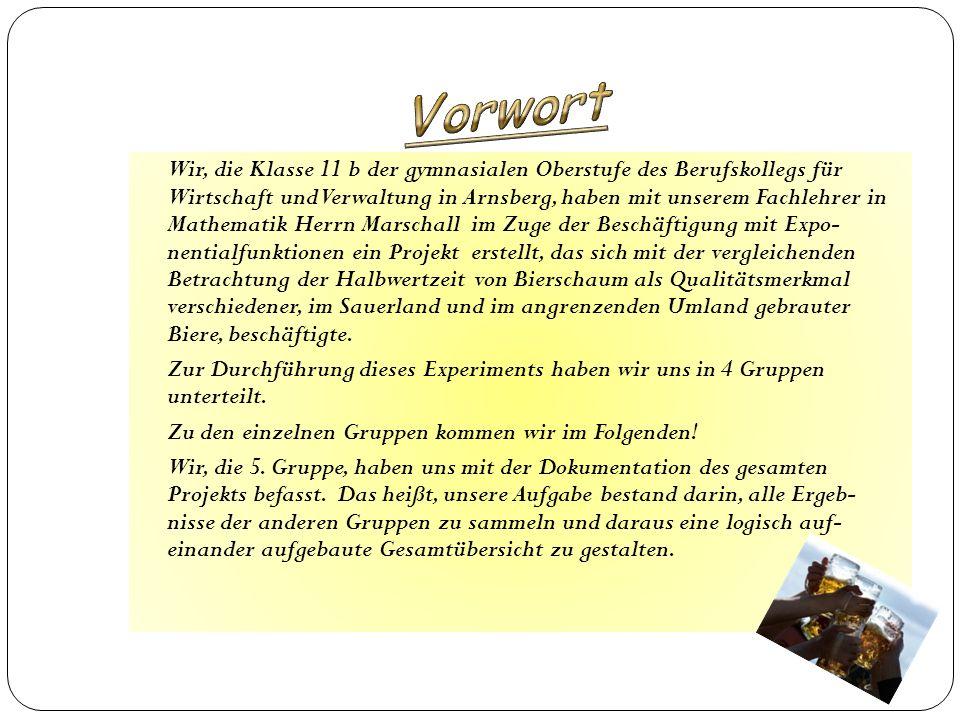 Wir, die Klasse 11 b der gymnasialen Oberstufe des Berufskollegs für Wirtschaft und Verwaltung in Arnsberg, haben mit unserem Fachlehrer in Mathematik