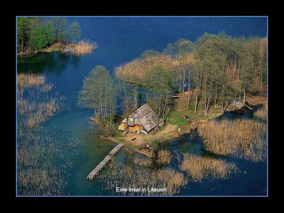 Eine Insel in Litauen