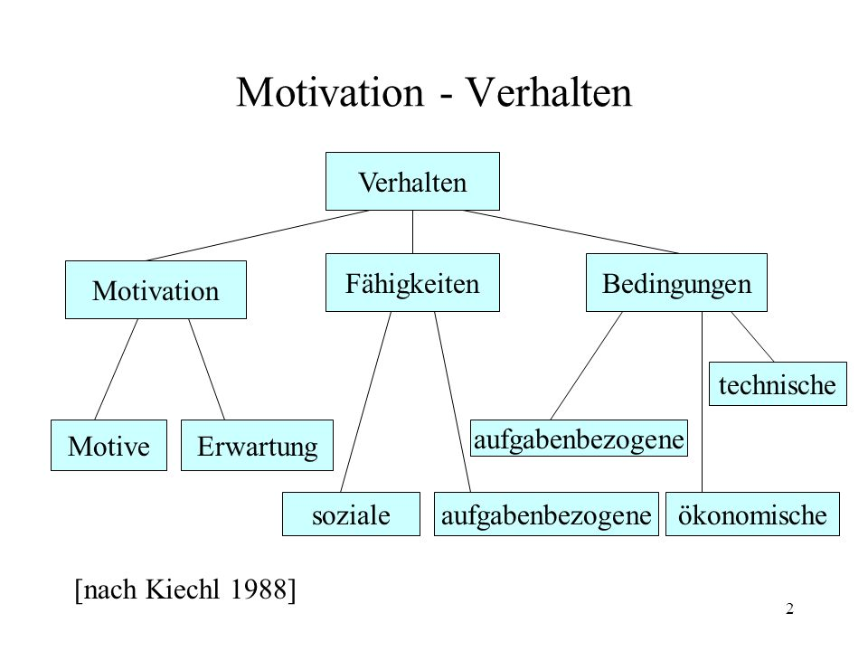 2 Motivation - Verhalten [nach Kiechl 1988] Verhalten Motivation Bedingungen technische aufgabenbezogene Fähigkeiten Erwartung ökonomischeaufgabenbezo