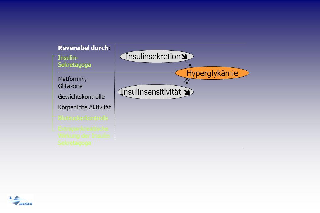 Insulinsekretion Insulinsensitivität Hyperglykämie Reversibel durch: Insulin- Sekretagoga Metformin, Glitazone Gewichtskontrolle Körperliche Aktivität Blutzuckerkontrolle Extrapankreatische Wirkung der Insulin Sekretagoga