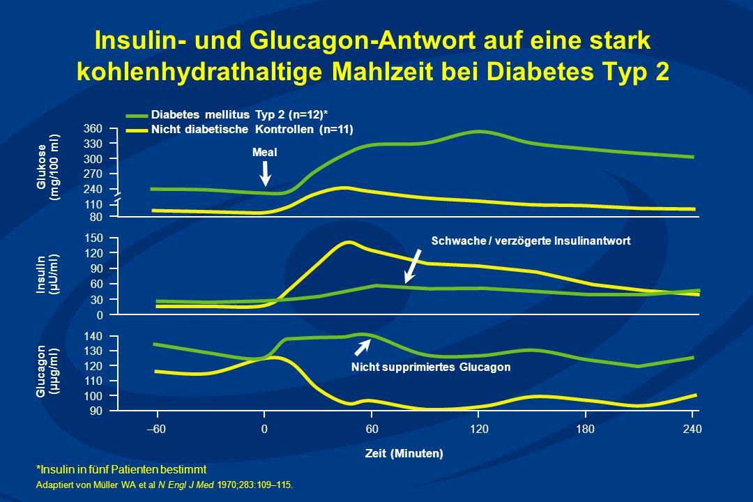 Insulin- und Glucagon-Antwort auf eine stark kohlenhydrathaltige Mahlzeit bei Diabetes Typ 2 Insulin (µU/ml) Glucagon (µµg/ml) Glukose (mg/100 ml) *Insulin in fünf Patienten bestimmt Adaptiert von Müller WA et al N Engl J Med 1970;283:109–115.