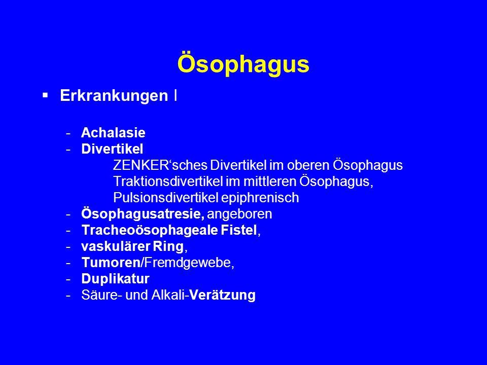 Ösophagus Erkrankungen I -Achalasie -Divertikel ZENKERsches Divertikel im oberen Ösophagus Traktionsdivertikel im mittleren Ösophagus, Pulsionsdiverti