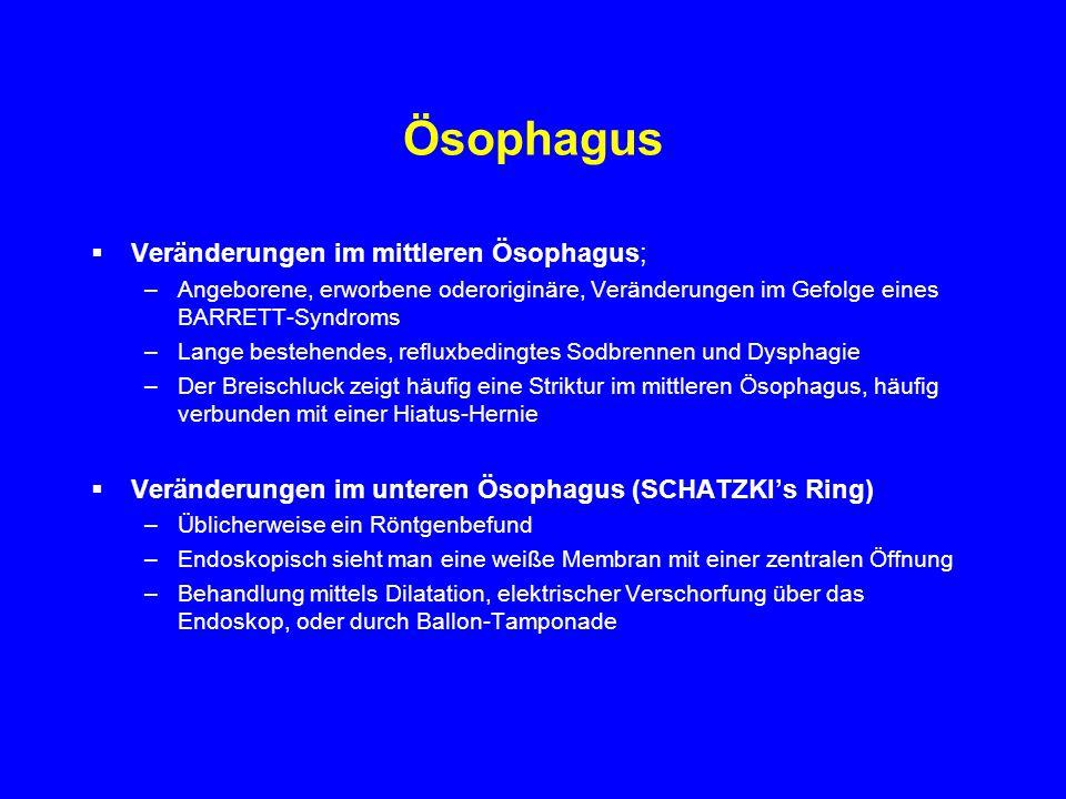 Ösophagus Veränderungen im mittleren Ösophagus; –Angeborene, erworbene oderoriginäre, Veränderungen im Gefolge eines BARRETT-Syndroms –Lange bestehend