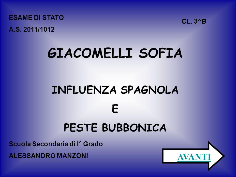 ESAME DI STATO A.S. 2011/1012 CL.